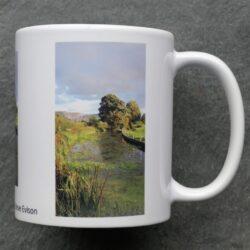 Montgomery Canal mug